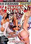 Canadian Beaver featuring pornstar India