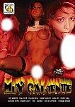 Muy Caliente featuring pornstar Brooke Ashley